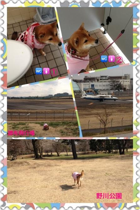 moblog_e34cc569.jpg