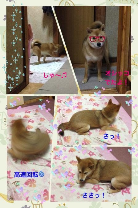 moblog_f7c1331f_20120322085642.jpg