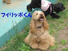 jemin+003_convert_20100525220759.jpg