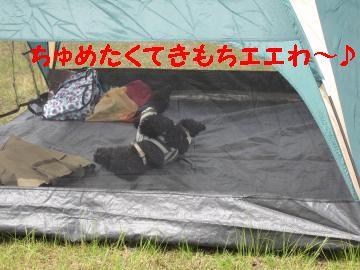 jemin+017_convert_20100510231335_20100511010932.jpg