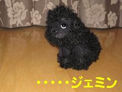 jemin+028_convert_20100607235142.jpg
