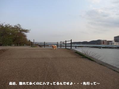 DSC032210.jpg