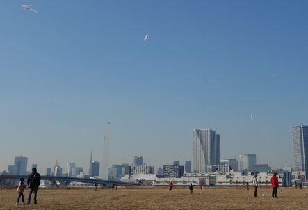 凧がたくさん