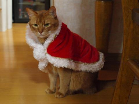 さよならクリスマス02(2012.12.23)