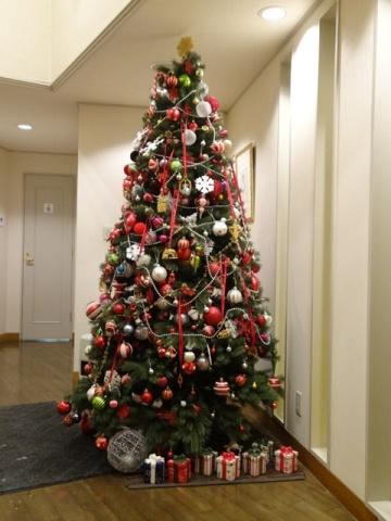 虫狩のクリスマスツリー(2012.12.27)