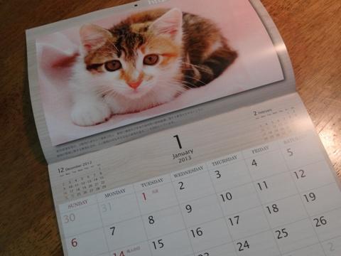しっぽの会のカレンダー03(2012.12.29)