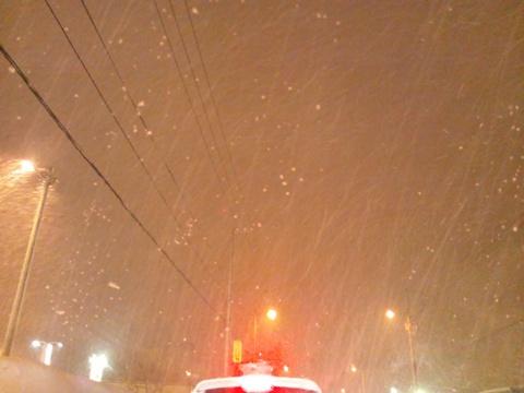 大雪の日08(2013.02.07)
