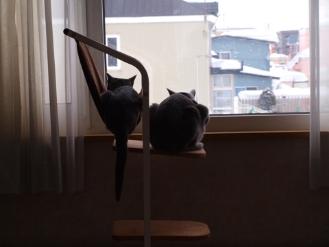 二者関係03(2013.03.03)