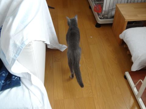 二者関係06(2013.03.04)