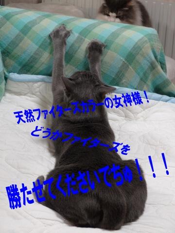 神頼み(2013.04.18)