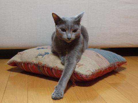 ニコあくび04(2013.05.28)