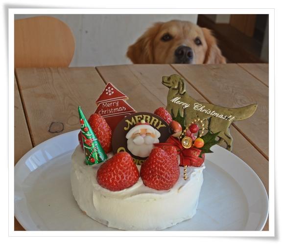 人用クリスマスケーキ201312