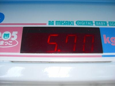 ジュリアの体重測定 20100307 009