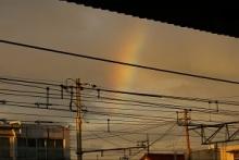 日常dlive-虹