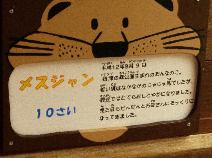 110208_110129b.jpg