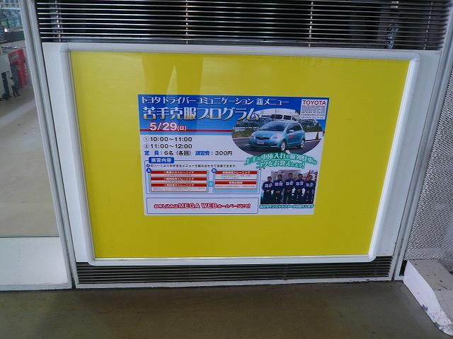 P1080967-690.jpg