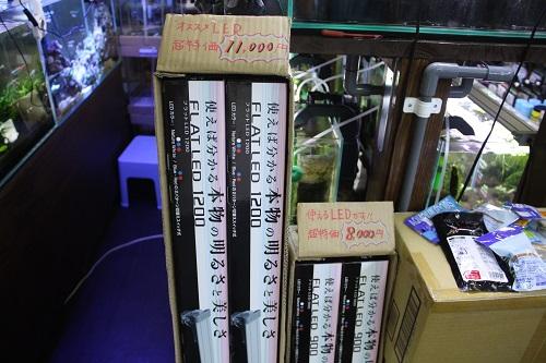 コトブキ工芸フラットLED特価 東海 岐阜 熱帯魚 水草 観葉植物販売 Grow aquarium