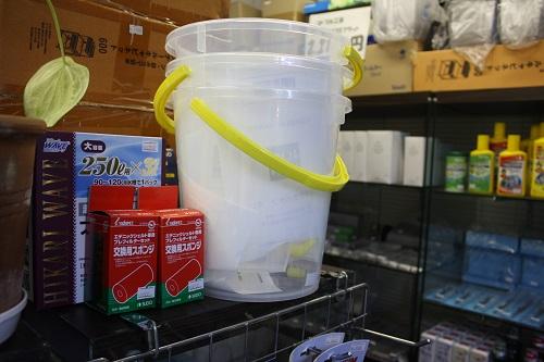 コック付バケツ東海 岐阜 熱帯魚 水草 観葉植物販売 Grow aquarium