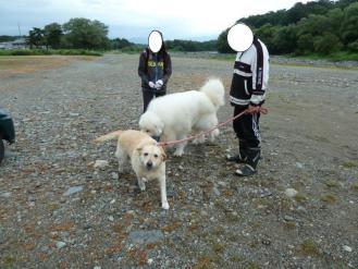 2012_09_09_03.jpg