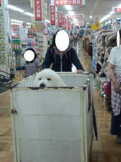 2012_09_23_02.jpg