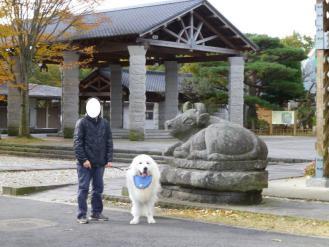2012_11_18_09.jpg