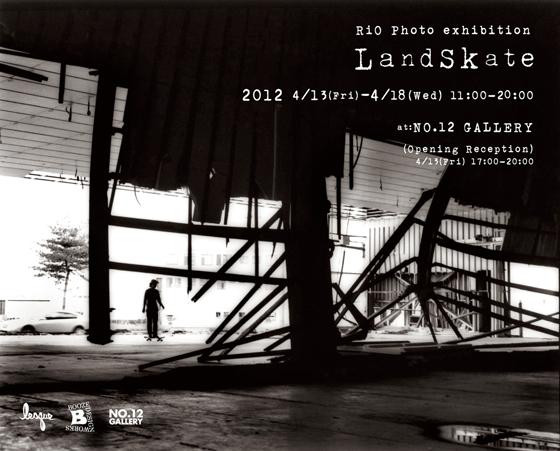 landskate2012a.jpg