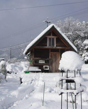 小屋 雪かき前 251228
