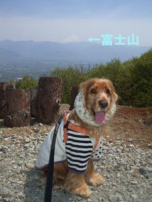 目の前に富士山