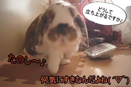 DSC05879_20131130135417663.jpg