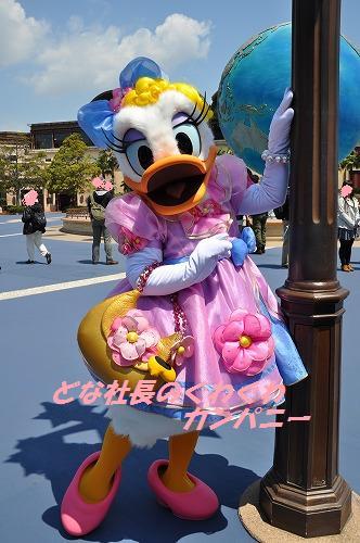 20110429DSC_1719.jpg