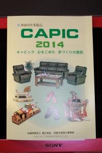 CAPIC(表)