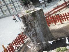2012_0416SUNDAI19890033