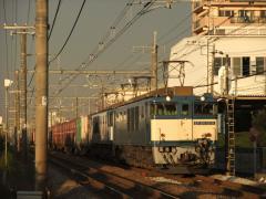 DSCF0257.jpg
