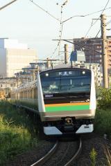 DSC_5230-.jpg