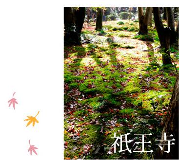 kyotokoyo2_02.jpg