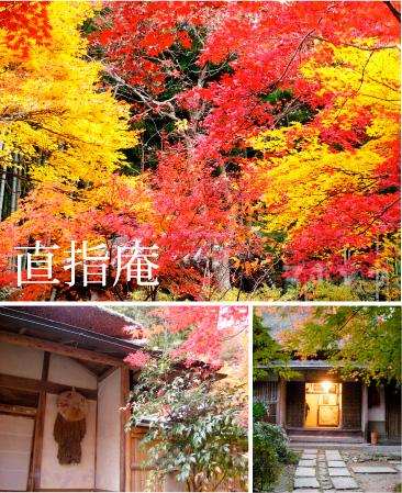 kyotokoyos1.jpg