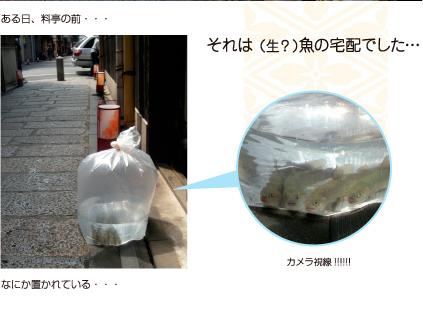sirakawa1-2.jpg