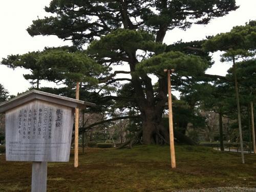 s-2010 kanazawa (25)