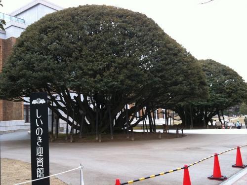 s-2010 kanazawa (15)