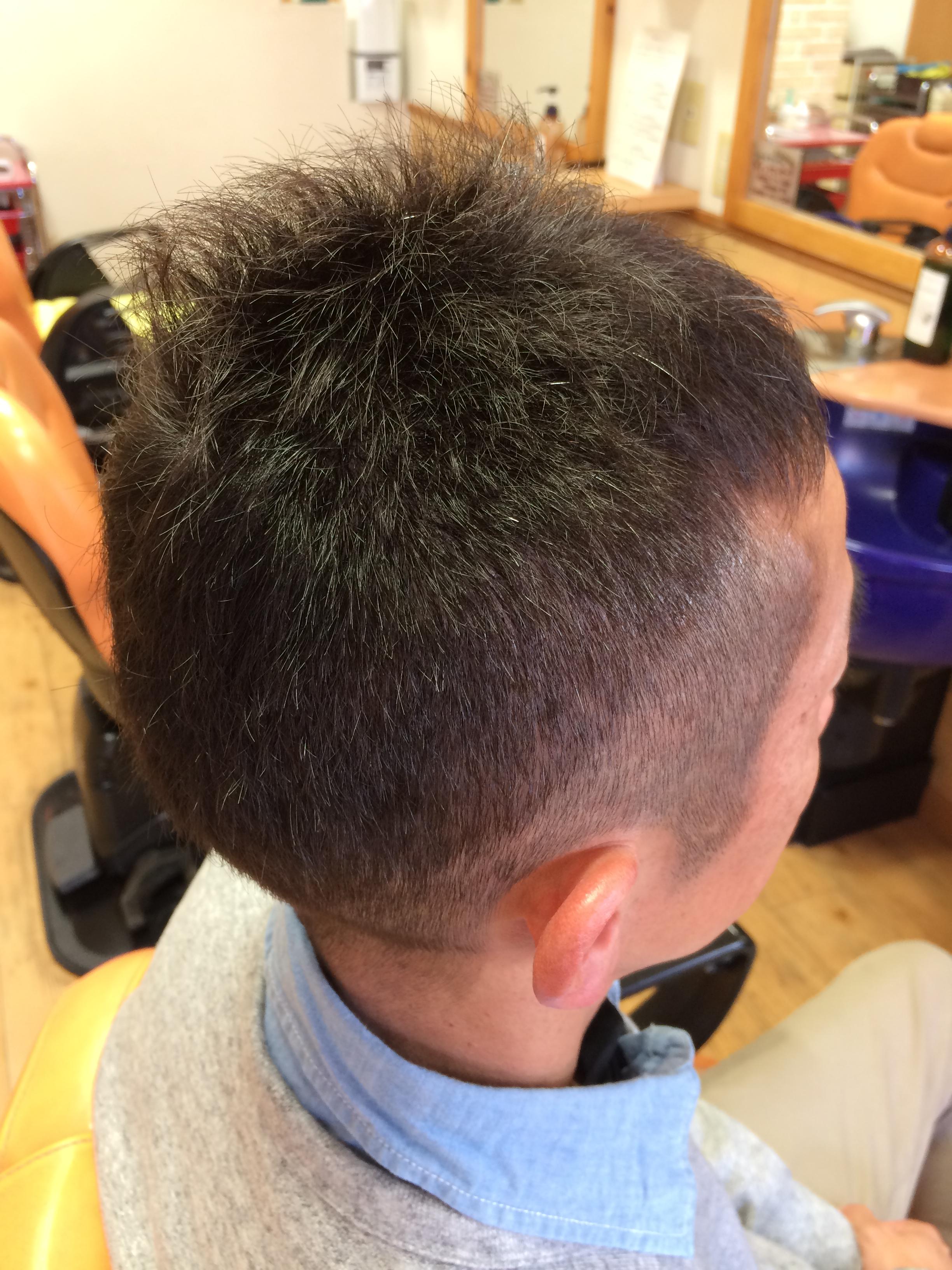 アフター 欧米人風ハーブカラー  男性ショートヘア 白髪10%