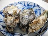 牡蠣 お土産