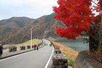 [旅行] ACCORD 神奈川県