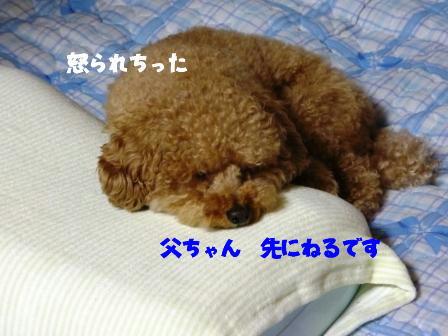 04291_20110429191052.jpg