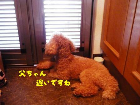 PHOTO1300.jpg