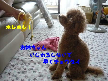 PHOTO1301.jpg