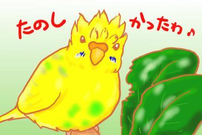 小松菜浴び