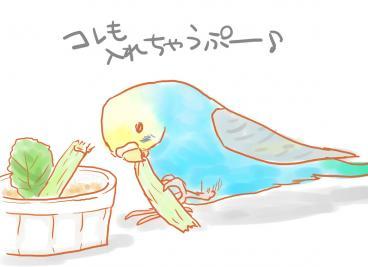 ぷーのお遊び
