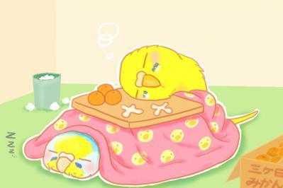 コタツでうたた寝