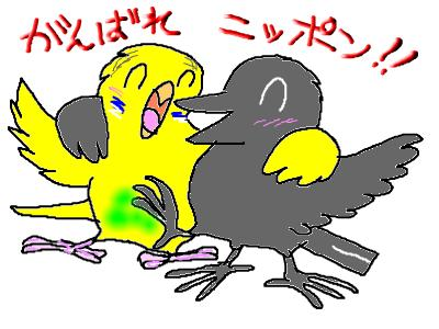 snap_hamukii_201062235140.jpg