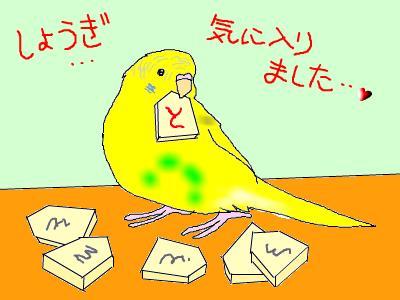 snap_hamukii_201072145252.jpg